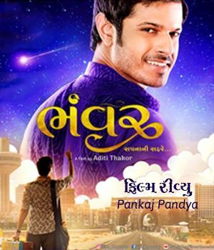 Bhanwar Film Reviews