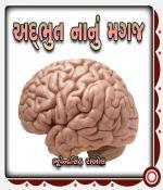 Adbhut Nanu Magaj